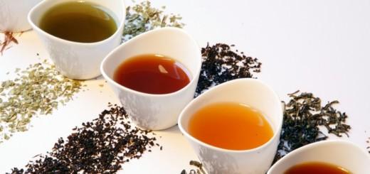 разные сорта чая 6048 х 4032 рх