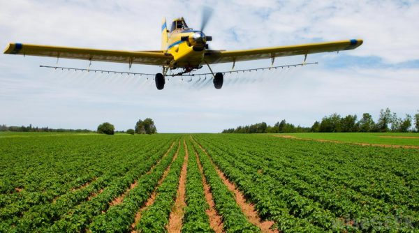 fungicide in agricultura