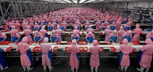 chinese_chicken_factory_39768000