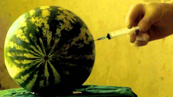 pepene injectat