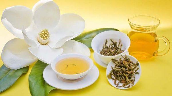 essiac-tea