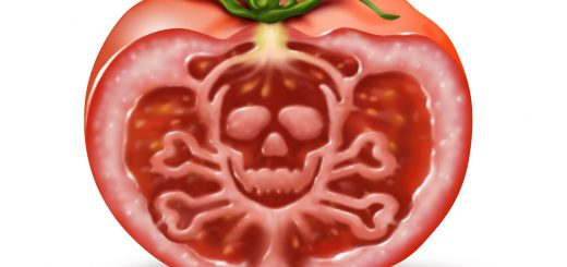 rosie otravita