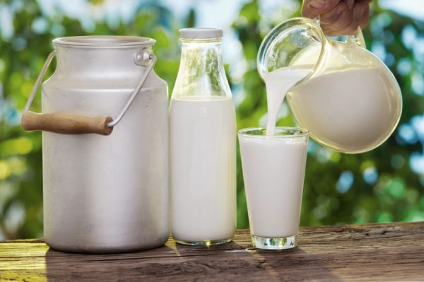Lapte (1)