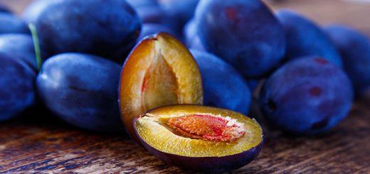 prune (1)