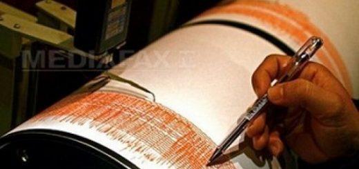seismograf-imagine