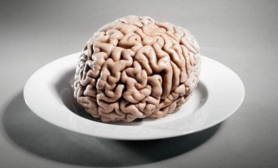 brain-fat