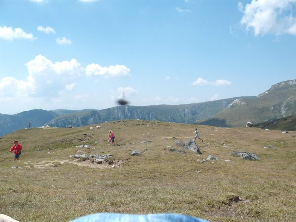ozn-ul-survoleaza-zona