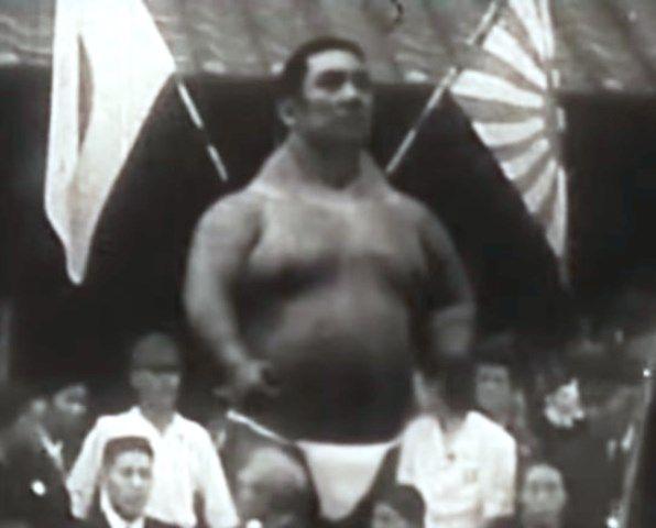 uriasul-japonez