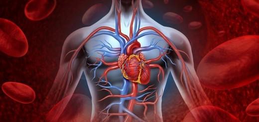hipertensiune-520x245