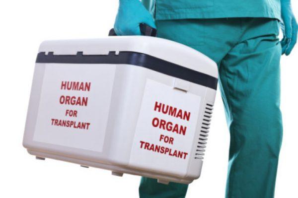 organe pentru transplant