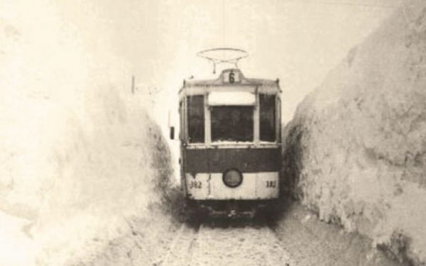 1954 iarna