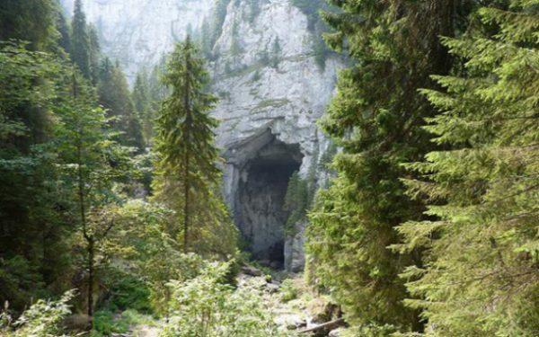 portale2