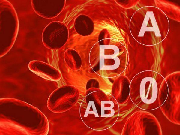 grupe sanguine1
