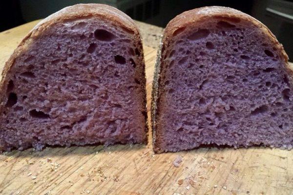 paine violet1